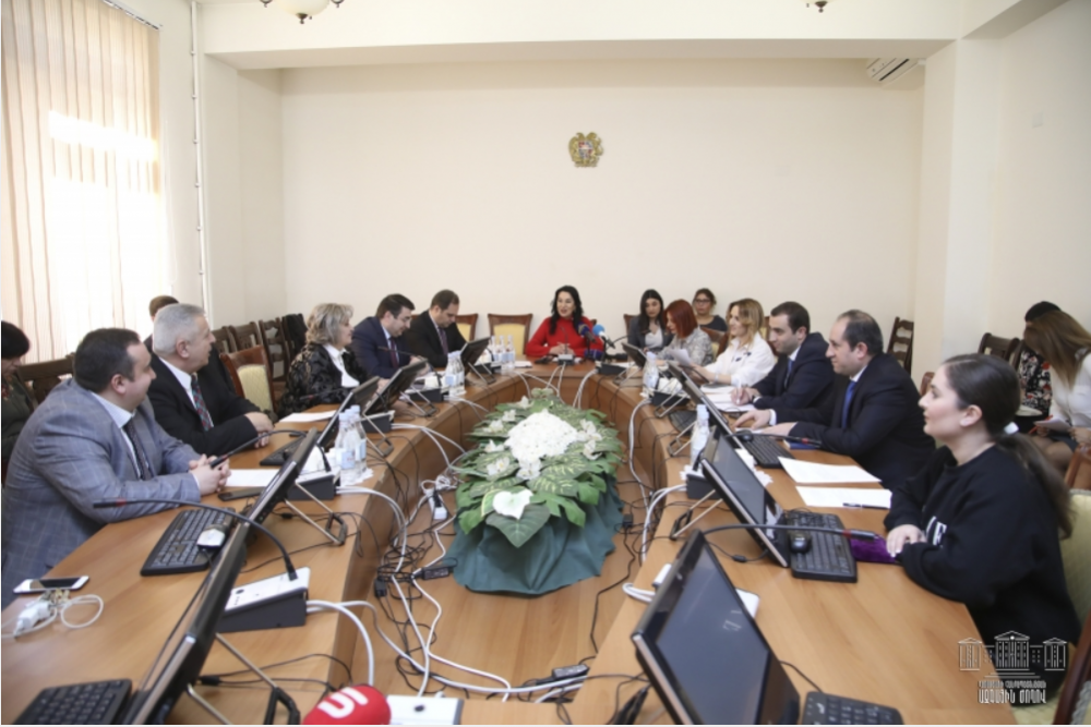 DISCUSSION AT RA NA STANDING COMMITTEE ON PROTECTION OF HUMAN RIGHTS AND PUBLIC AFFAIRS
